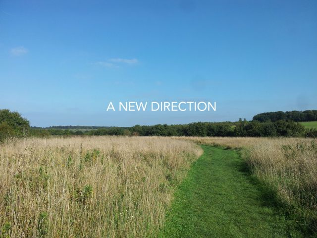 A NEW DIRECTION - Hello Sam Goodbye Samantha